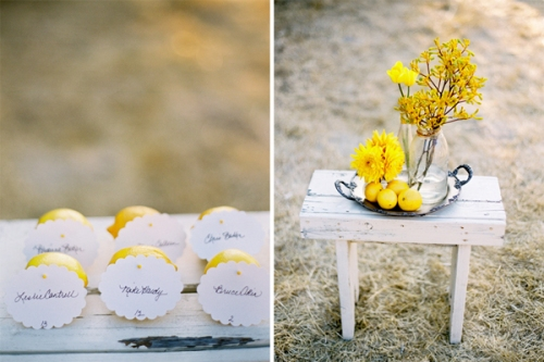 lemon-escort-cards1